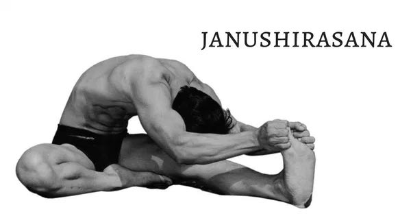 janushirshasana benefits in tamil