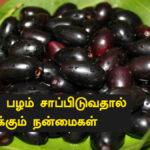 naval palam benefits in tamil