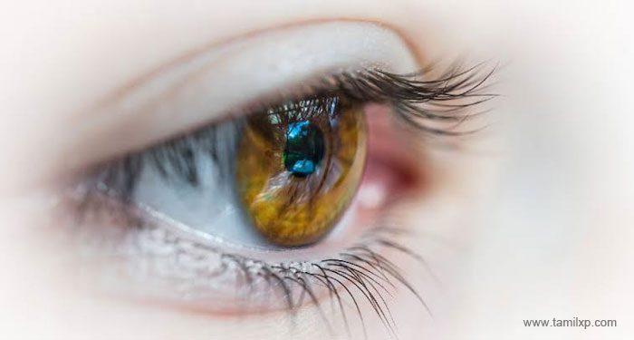Eye Care Tips in Tamil