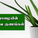 katralai benefits in tamil