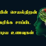 brain development food in tamil