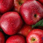 apple fruit benefits in tamil language
