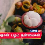 Mangoustan benefits in Tamil