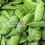 avarakkai health benefits in tamil