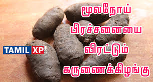 karunai kizhangu health benefits in tamil