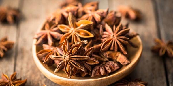 star anise benefits in tamil